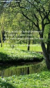 vismutti-citat-161130